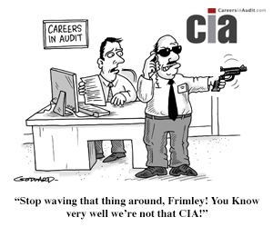 Audit Cartoon - Frimley